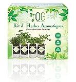 OG Kit Huerto Urbano - Kit Completo de 4 Plantas aromaticas (Tomillo, Cilantro,...